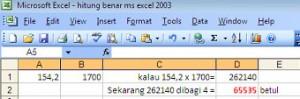 Perhitungan Benar MS excel 2003